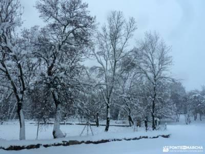 nieve, invierno, cañada; siete picos senda del cares parque picos de europa
